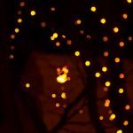 2013 SENDAI 光のページェント ピンクの電球