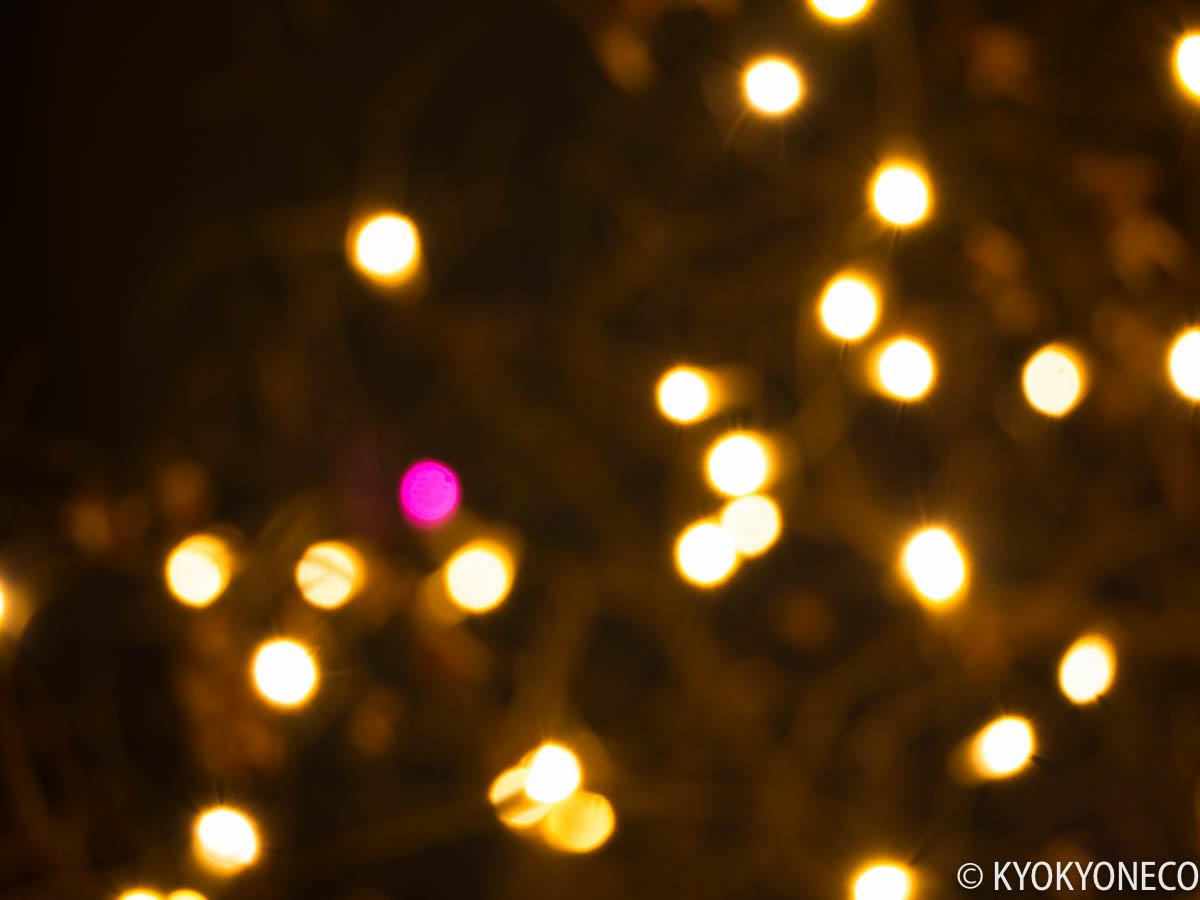 ピンクの電球