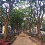 2016年9月の定禅寺通